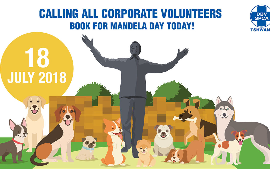Calling all Corporate Volunteers!