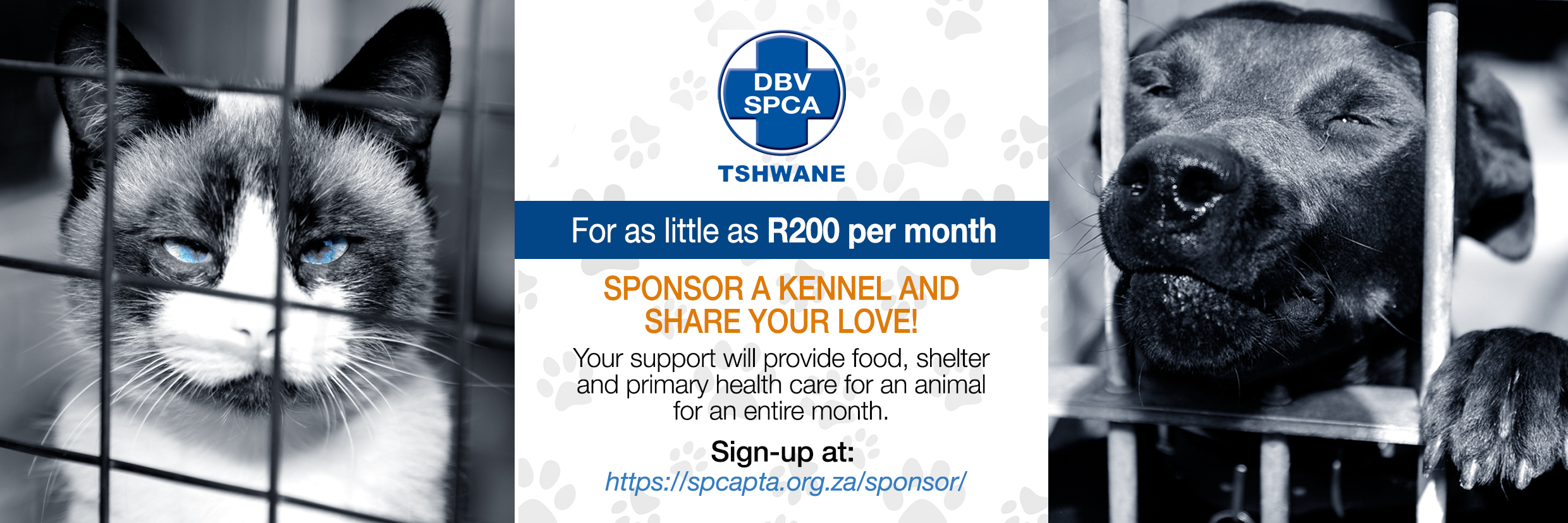 Tshwane SPCA - Society for the Prevention of Cruelty to Animals
